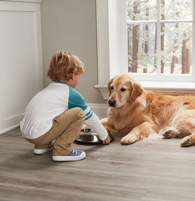 4 Advantages of Pet-Friendly Flooring