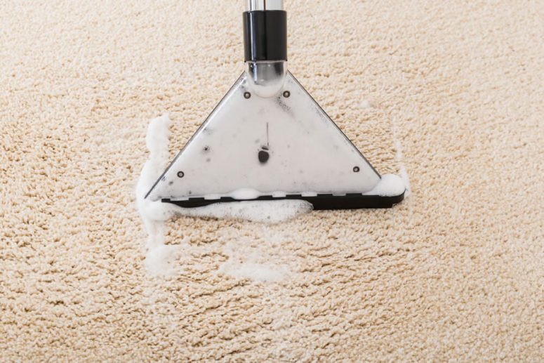 Borax to Clean Carpet Stains